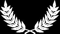 ikona skrzydeł
